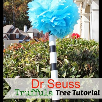 Tutorial: How To Make Dr Seuss Truffula Trees